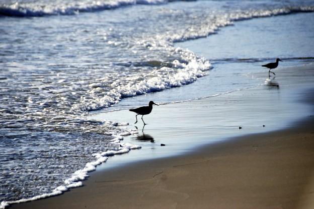 Santa Claus Beach, photo by Donna Greene